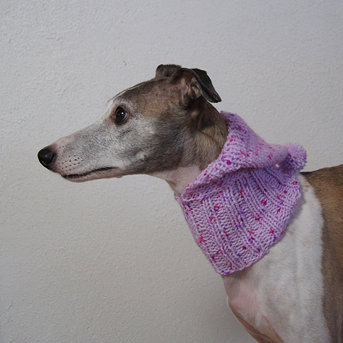 Sighthound Hood20