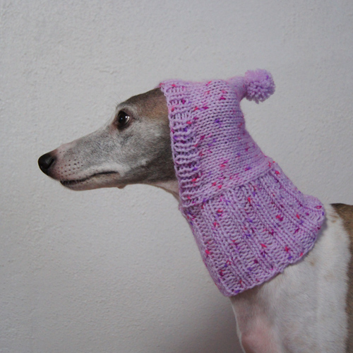 Sighthound Hood19